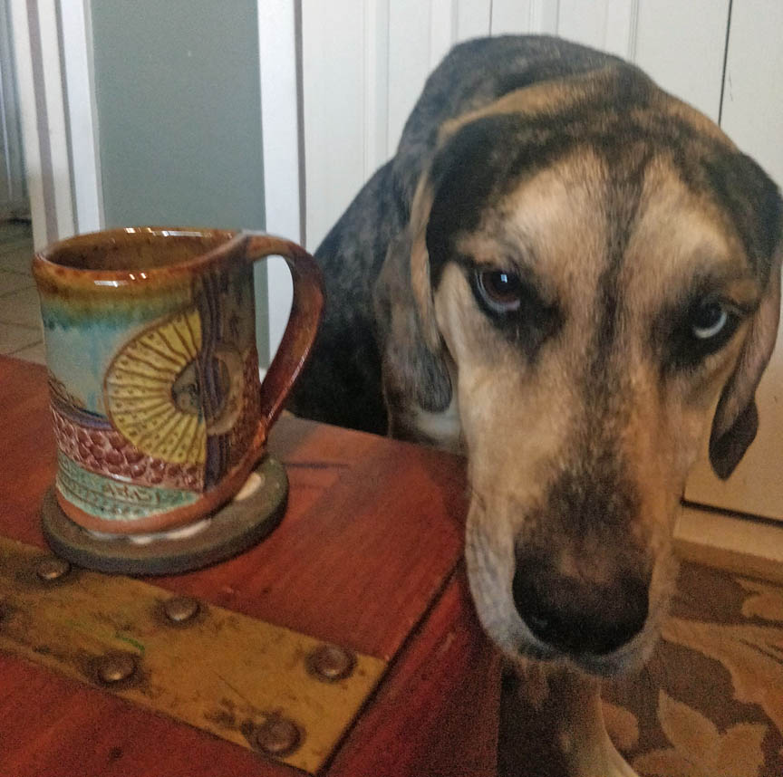 A black, gray and tan hound dog with one blue eye next to a mug with abstract sun design.